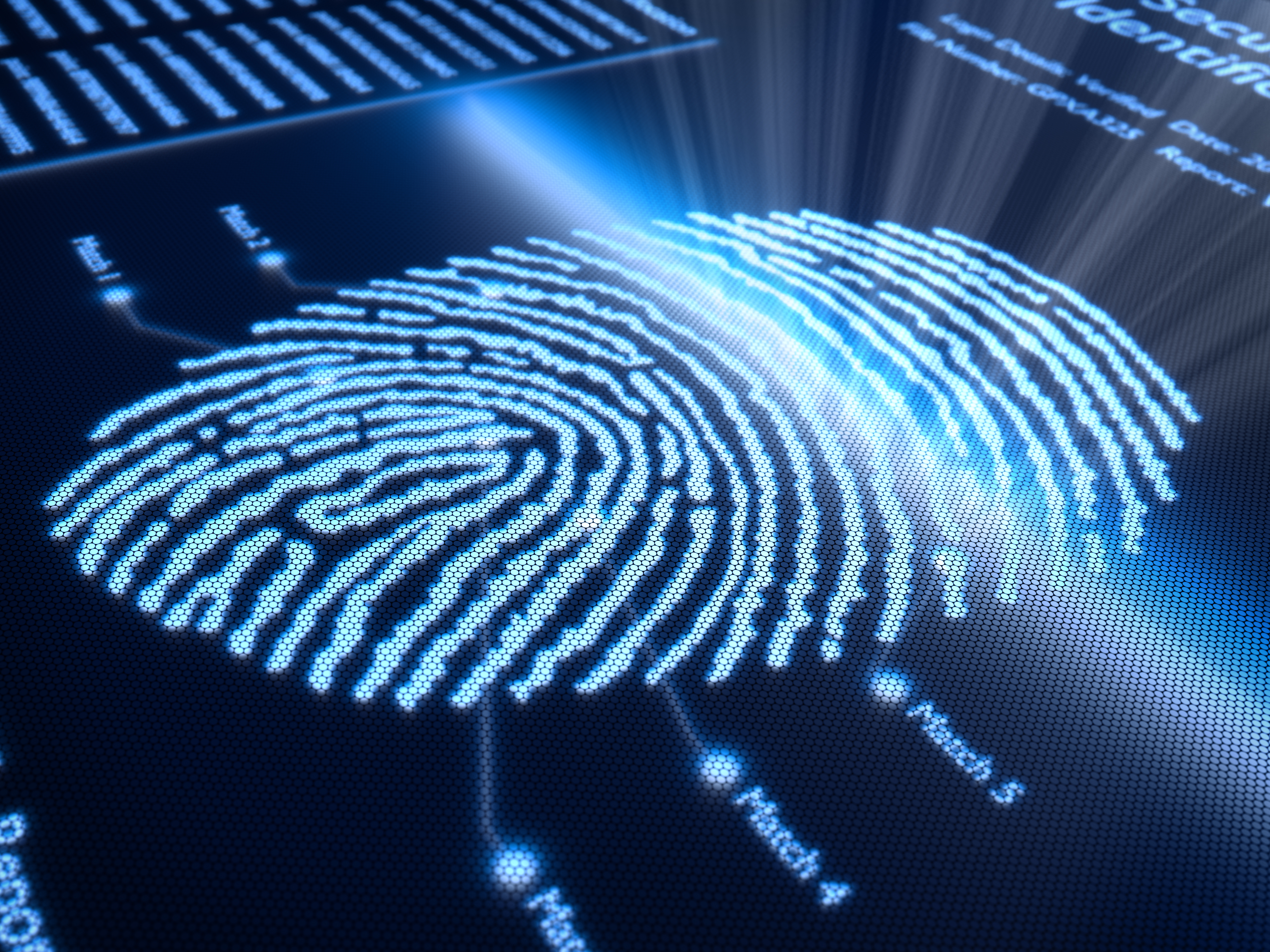 How Fingerprints are Obtained and Used